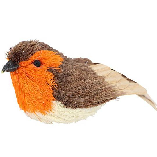Hanging Bristle and Wood Robin 12cm