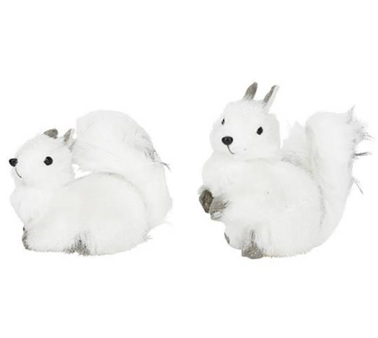 Squirrel White & Grey Fluffy Fur