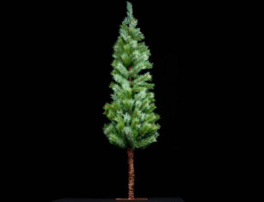Slimline Green Fir Tree Med 122cm