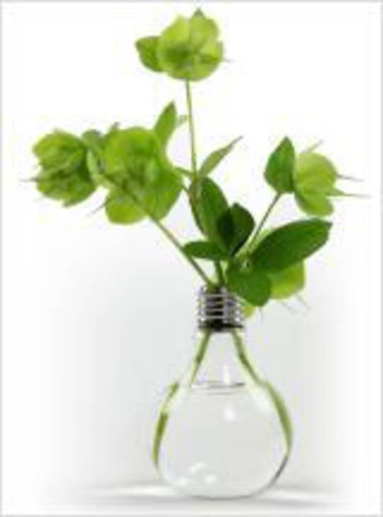 OD Light Bulb Vase Large