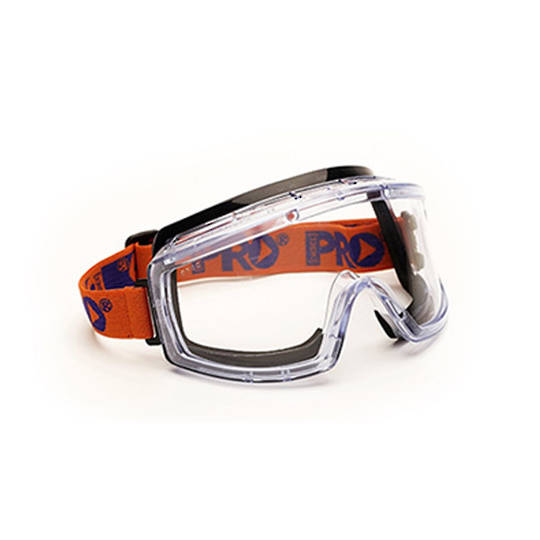 ProChoice Clear Goggle Anti Fog