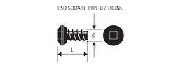 RSD TYPE B SELF TAP SCREW - 8g x 10mm