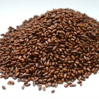 Sea buckthorn seed oil, certified organic