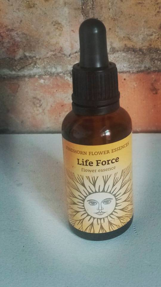 Flower Essence Life Force 25ml