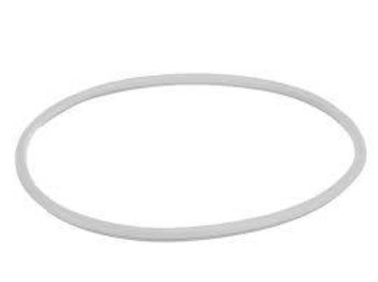 Bosch Tumble Dryer door seal WTA74201au, WTC84100AU, WTA74200AU, WTC84101AU,