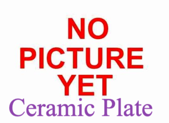 Panasonic Microwave Ceramic plate DS592B,