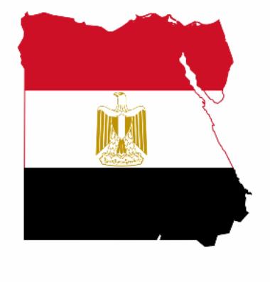 333-3335547 flag-map-egypt-map-and-flag-498-177