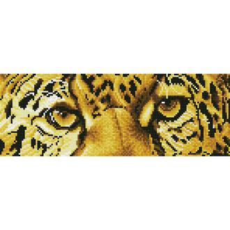 Leopard Spy  DD5.028