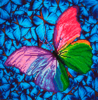 Flutter by Pink DD5.015