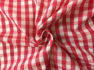Gingham Cerise and White