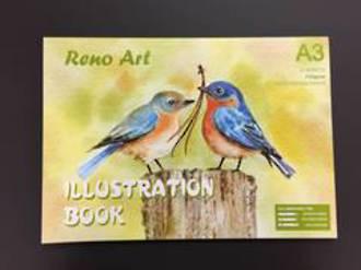 Illustration Book A3