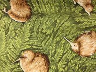 Kiwiana Print - Kiwi bird