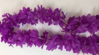Leis - Dress up flowers