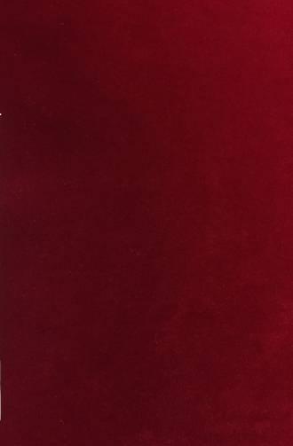 Velvet fabric - Wine