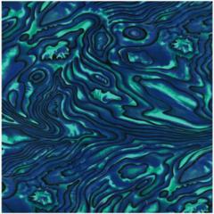 Pacifica Paua