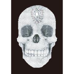 Crystal Skull DD10.021