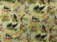 Chatter Bird