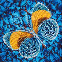 Flutter by Gold DD5.016