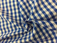 Gingham Blue and White