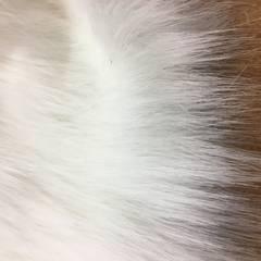 White Fur Fabric Long Pile