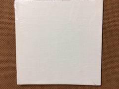 "Canvas Panel 4"" x 4"""