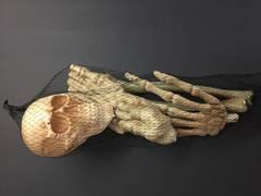 Bag of bones - XH2241