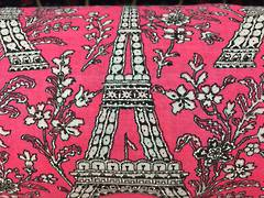 Eiffel Tower and vines on pink ground