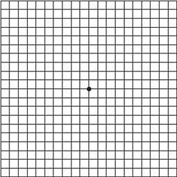 Amsler_grid.jpg