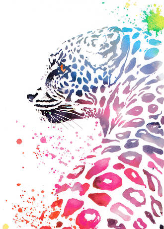 A Spell In The Wild Leopard