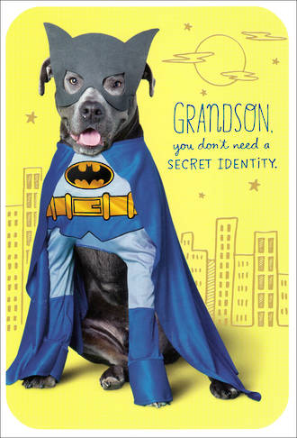 Grandson Birthday Card Hallmark Batman Dog