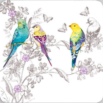 Pizazz Limited Edition Budgies