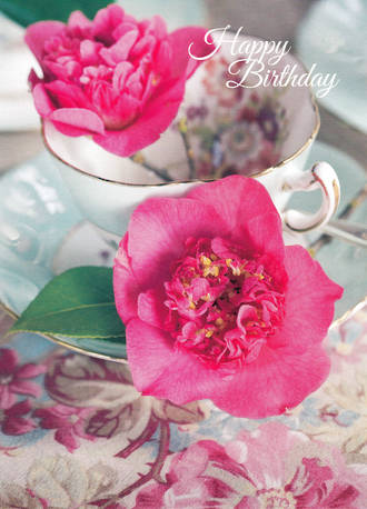 Birthday Wishes Teacup