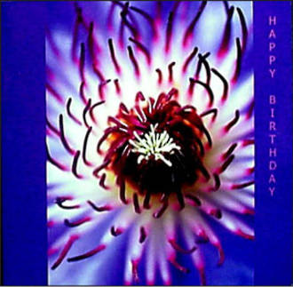 Female Birthday Card: W11 Clematis