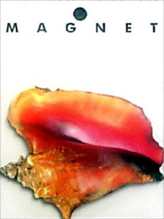Magnet Conch Shell