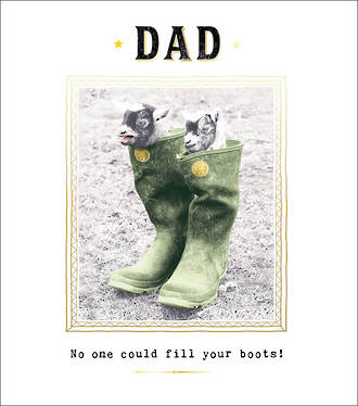 Dad Birthday Card Funny Works Fill Your Boots