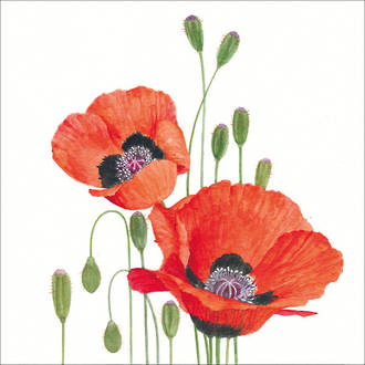 Cocktail Napkins Paper Products Poppies