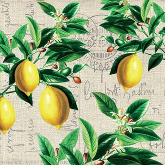 Lunch Napkins Paper Products Capri