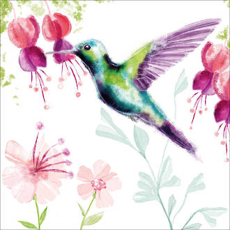 Lunch Napkins Paper Products Hummingbird