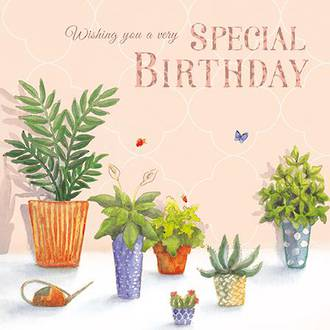 Lovelily Special Birthday Plants