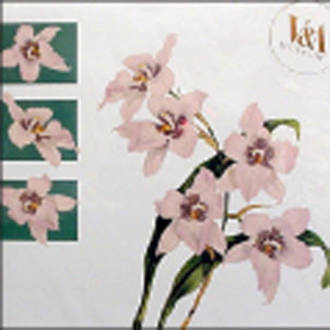 Blank Card Floral V&A Square Orchid
