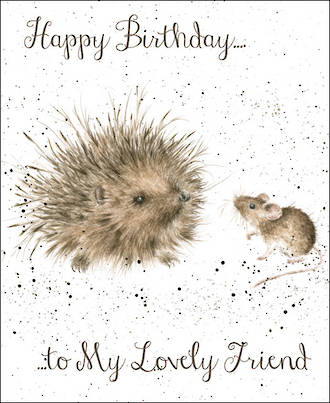Fur Feathers Birthday Lovely Friend