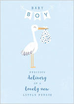 Baby Card Boy Stork Delivery
