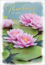 Sympathy Card Thinking of You Posies & Petals Lilypads