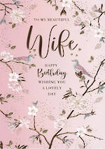 Wife Birthday Card Belgravia Beautiful Wife
