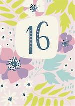 Birthday Age Card 16 Female Seville Floral
