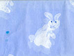 Tissue Paper Pack Bunny Hop Blue