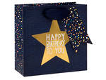 Small Gift Bag Paper Salad Star Male
