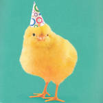 Hallmark Anthem Male Party Hat On Chick