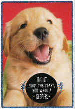 Son Birthday Card Hallmark Puppy