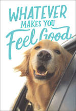 Woof & Purr Feel Good